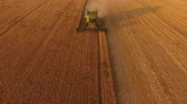arazi sahibi : Aerial view of combine. Agriculture and technology. Stok Video