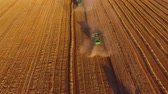 arazi sahibi : Field and combines, aerial view. Wheat field.