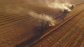 arazi sahibi : Field with combines, aerial view. Wheat field. Stok Video