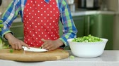 cucumber soup : Hand of kid cooking. Chopped lettuce and cucumber. Stock Footage