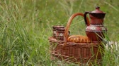 estoque : Picnic on the nature. Weekend in the summer outdoors. Basket with food in the grass. Picnic set. Objects for a picnic. Summer rest. Stock Footage