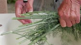 dill : Old mans hands are washed dill. Old workers hands. Stock Footage