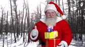 kind : Santa holding gifts outdoor. Santa Claus, winter forest. Stock Footage