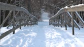 életmód : Road throught the park, winter. Wooden bridge, snow.