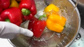 soup ingredients : Bell peppers falling into water. Bright-colored vegetable. Stock Footage
