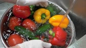 cucumber soup : Hands washing vegetables in slow-mo. Fresh peppers, cucumbers and tomatoes. Stock Footage