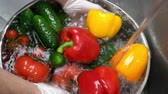 cucumber soup : Hands washing fresh vegetables. Bell pepper and tomatoes. Stock Footage