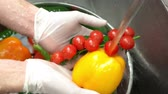 cucumber soup : Hands washing vegetables close up. Tomatoes, bell pepper and cucumber. Stock Footage