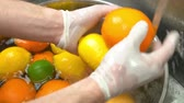 citrus fruit recipes : Hands washing fruits close up. Orange, lemon and lime. Stock Footage