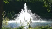 kolaylık : Fountain and nature, slow motion. Plants near water. Peaceful place outside the city.