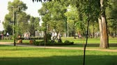 encart : People in the summer park. Blurred defocused background.