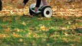 electric scooters : Girl pick up fallen oak leaves riding electrical gyroscooter. Close up. Green grass covered with yellow leaves. Stock Footage