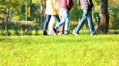 outing : Walking strolling people outdoors. Green lawn with grass.