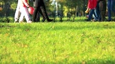 outing : Stroll in the park. Green lawn grass. Stock Footage