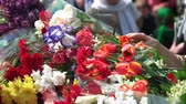 veterán : Celebration of may 9, victory day. Close up. Many bouquets of flowers. Dostupné videozáznamy
