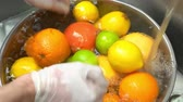 citrus fruit recipes : Hands washing fresh fruits. Lemons, grapefruits and oranges.
