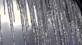 básico : Icicles hanging from roof begin to melt with the coming of spring. Close up. Vídeos
