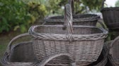 木箱 : Empty wicker harvest baskets stacked under the tree