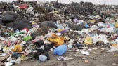 koku : The Environment, Garbage Dump, Pan Stok Video