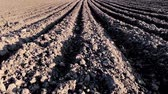 Empty plowed field with dark soil at beginning of spring or end of autumn. Plowing field soil after autumn works. Farm in countryside - black soil fields in autumn season.