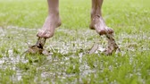 snadnost : Close-up slow motion shot of barefoot man jumps in grass while water sprinkles. People in muddy puddle. Male legs walking on wet green grass. Freedom and happiness concept. Dostupné videozáznamy