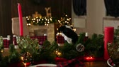 Санта шляпе : Little puppy on the Christmas table. Christmas decorations. Happy christmas concept. Стоковые видеозаписи