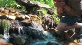 жемчуг : Drink pure water from mountain river mans hand is absorbed by pure water from mountain river.