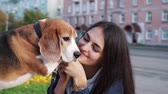 гончая : Girl walk about with beagle puppy in autumnal park