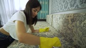 estofamento : Service cleaning dirty sofa and chair with a special tool, detergent is applied. Cleaning with professional tools