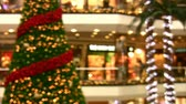 striding : Christmas at the Mall