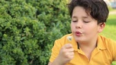 making a wish : Child blowing Dandellion seed
