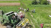alan : Drohobych, Ukraine - 04 July, 2018: Aerial view of combine harvester winnowing wheat into big bag held by people. Harvesting, countryside. Slow motion