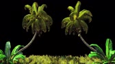 virgem : The branches of palm tree and Tropical plant in the wind.With alpha channel. Codec-PNG Alpha. Beautiful summer looped background. Stock Footage