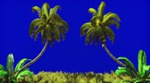 panna : The branches of palm tree and Tropical plant in the wind on blue screen. Beautiful summer looped background.