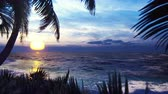 out of focus : Branches of palm trees and tropical plants in the wind on the background of a beautiful sunset. Beautiful summer loop background.