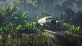 кокпит : Wrecked plane lies in the jungle in the middle of palm trees and tropical vegetation