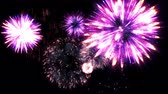 şenlik : Fireworks motion graphics with night background 2