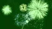 クリスマスツリー : Fireworks motion graphics with green screen background 2