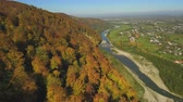 marvelous : Aerial, top view from Drone: flying over the mountain with forest and river. Forest yellow autumn color. River at the foot of the mountain.