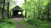 coberto : Old Covered Bridge in the woods Stock Footage