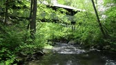 Stream flowing under old covered bridge
