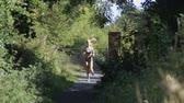 зелень : Young woman running along a woodland footpath on a sunny day Стоковые видеозаписи
