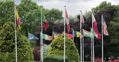 Flags from around the world on flagpoles, blowing in the wind. 動画素材