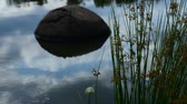 yansıma : rock sticking out of water of a lake Stok Video