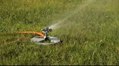 техника : oscillating lawn sprinkler irrigating a suburban yard