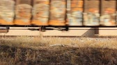 low angle view of railroad boxcars passing by on the tracks Stock Footage