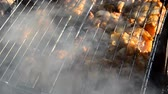 flavouring : Pieces of fried meat on a grate, with smoke and fire. Fried meat on grate with smoke. Stock Footage