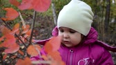szafa : Happy little child. Child walking in warm jacket outdoor. Girl happy in pink coat enjoy fall nature park. Child wear fashionable coat with hood. Fall clothes and fashion concept. Wideo