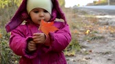 criança : Happy little child. Child walking in warm jacket outdoor. Girl happy in pink coat enjoy fall nature park. Child wear fashionable coat with hood. Fall clothes and fashion concept. Stock Footage