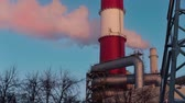 Thermoelectric power station Stock Footage